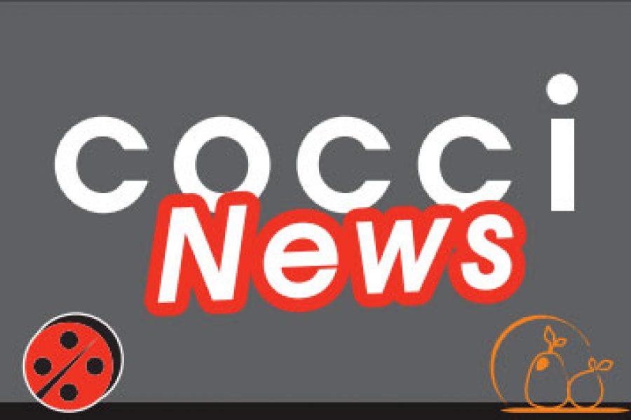 Coccinews
